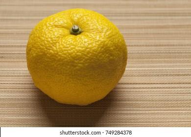 Single fresh yellow Japanese Yuzu
