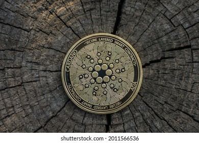 single golden ada coin from cardano currency lying on a dark cracked tree trunk back middle detail