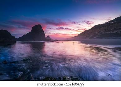 A single great blue heron standing on beach of Oregon coast at dawn.