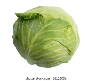 Single green cabbage. Close-up. Isolated on white background.
