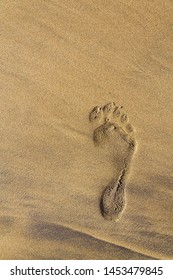 Single human barefoot footprint of right foot in brown yellow sand beach background, summer vacation or climate change concept, copy space