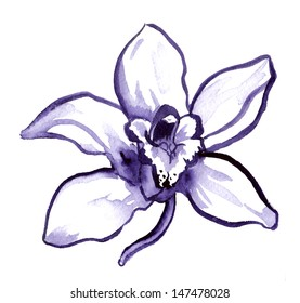 Single ink-painted orchid flower