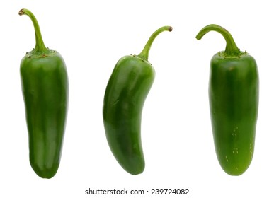 Single jalapeno pepper isolated on white background