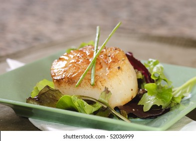 A single large scallop on a a bed of lettuce