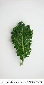 Single leaf of organic green kale on white background (isolate)