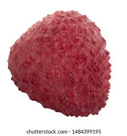 single lychee isolated on white background