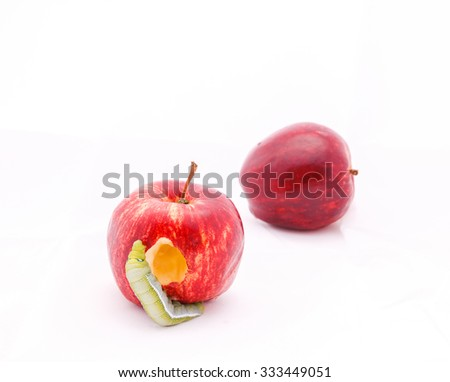 Single Maggot Eating Red Apple On Stock Photo Edit Now