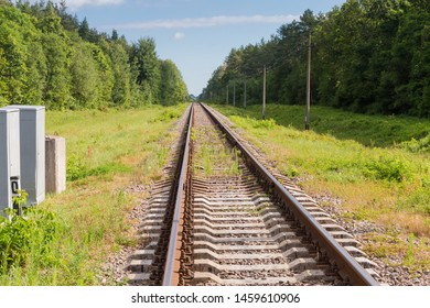 Single modern railroad tracks with concrete sleepers among the forest