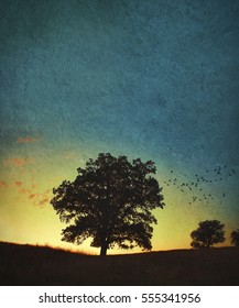 A single oak tree and a flock of flying birds on the prairie horizon done with texture