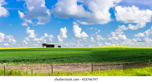 Single old shed in the middle of agricultural field with blue sky and clouds background