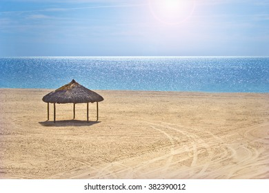 Single Palapa on Beach by Sea of Cortez