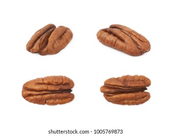 Single pecan nut isolated over the white background, set of four different foreshortenings