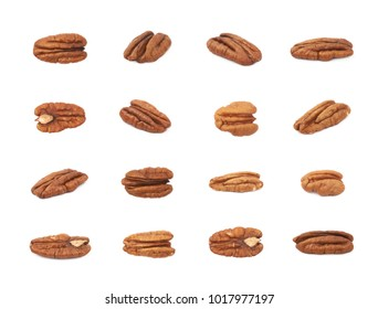 Single pecan nut isolated over the white background, set of multiple different foreshortenings