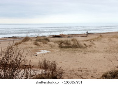 Single person on cold winter beach near frozen sea, dramatic blue sku full of clouds, yeallow sand with dry grass. Baltic sea landscape. Seashore, dune. Beautiful nature view. loneliness theme