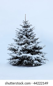 snow covered pine trees images stock photos vectors shutterstock