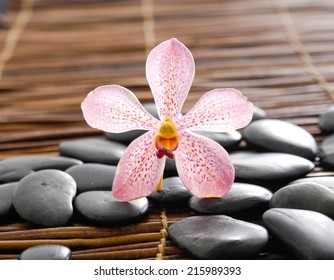Single pink orchid with black stones on bamboo mat