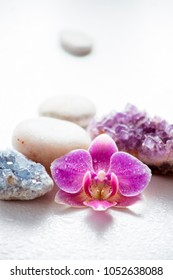 Single pink orchid blossom with zen stones and amethyst cluster and blue cluster crystal on light background with water drops. Mental peace concept.