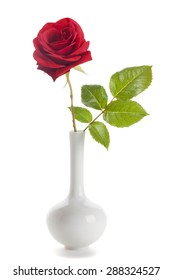Single red rose in a vase isolated on white background