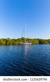 A single sailboat floats ancchored next to a mangrove forest in El Salvador, Central America