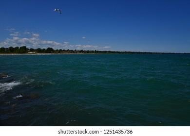 A single seagull hovers over Lake Michigan on a hot mid summer afternoon with a few distant clouds.