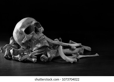 Single skull on pile bone and on dark background in the morgue wich had dim light / Still Life style selective focus and adjustment color for background