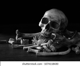 Single skull on pile bone and on dark background in the morgue, Still Life style, adjustment color for background, and pace for message
