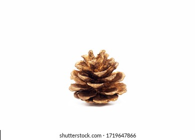 a single small golden pine cone isolated on white background