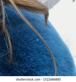 A single snowflake left frozen on the bright blue fur coat.