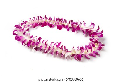 Single Strand Hawaii flowers lei necklace made from  Orchid Flower, Dendrobium Hybrid Pink, from Thailand on white background.