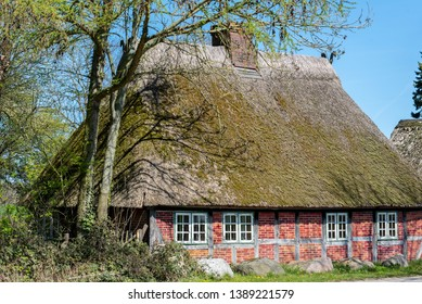 Single thatched house near Damp in Schleswig-Holstein, Germany