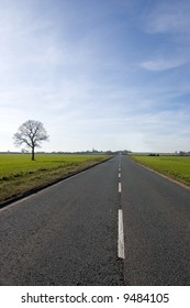 Single tree over looking a long road that stretches out almost to the vanishing point