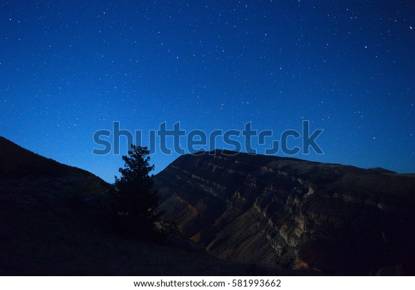 A single tree over the mountain in a nice night landscape