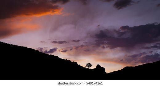 Single Tree at sunset silhouetted on mountain range with story skies above Carson City, Nevada