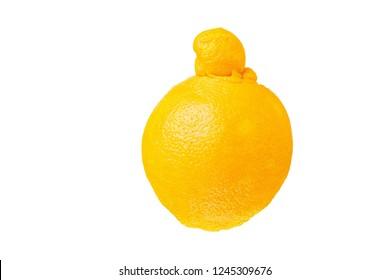 Single ugly orange isolated on white background