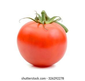 single vine tomato isolated on white