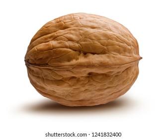 Single walnut isolated on white background