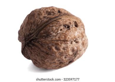 Single walnut isolated on white background.