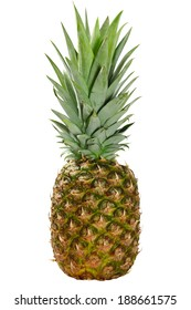 Single whole fresh pineapple fruit isolated on white background