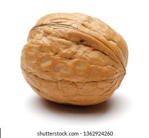 Single whole walnut isolated on white background