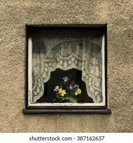 single window with flowers in vase