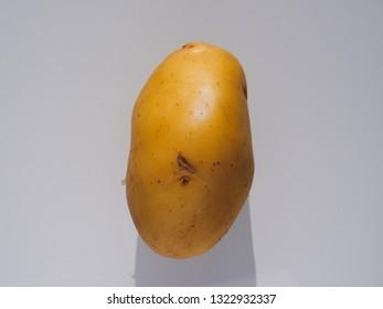 single yellow Potato