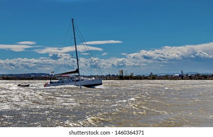 Single-mast sailing catamaran goes  along the river  against the wind with lowered sails under the motor on the background of a beautiful cloudy sky