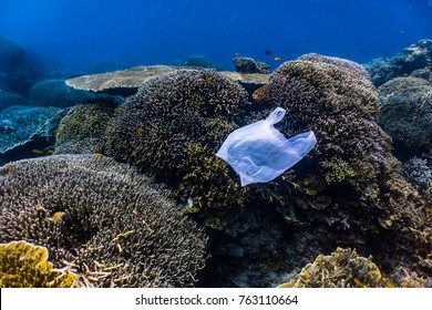Single-use plastic floating above a healthy coral reef