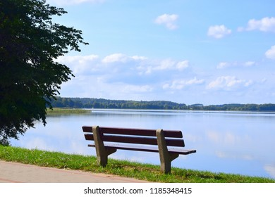 A singular concrete bench with wooden seat located next to a pavement and a lawn and near a singular tree overlooking a vast clean lake with some reeds growing seen during a cloudy yet warm autumn day