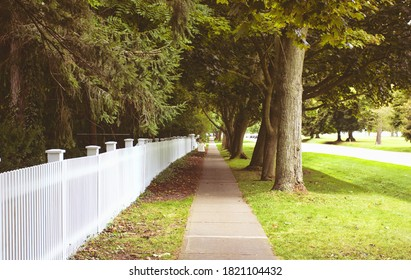 A singular sidewalk surrounded by trees at Niagara-on-the-Lake.