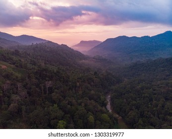 Sinharaja rain forest nature reserve Sri Lanka Aerial View at Sunset Mountains Jungle Ancient Forest