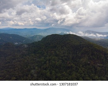 Sinharaja rain forest nature reserve, Sri Lanka. Aerial View at Sunset Mountains Jungle Ancient Forest