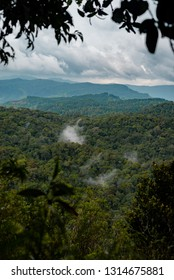 Sinharaja rain forest nature reserve, Sri Lanka. View from top of mountain to forest.