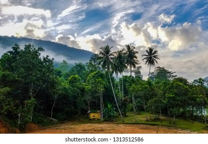 Sinharaja rain forest Sri Lanka. Sky and the tree line between forest and village.