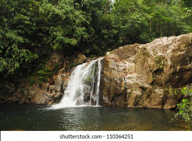 Sinharaja Rainforest Waterfall